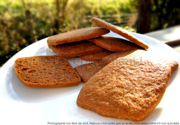 Petits biscuits façon Speculoos…maison !